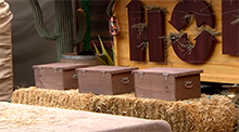 Big Brother 15 HoH Competition - Bull in the China Shop